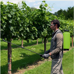 Aparat manual de stropit Di Martino Garden G3019/SBL, 12 L