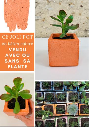 plante en pot design béton orange