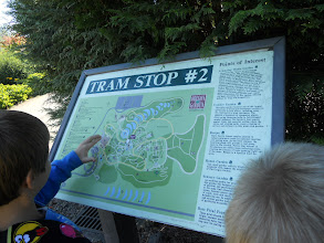 Photo: Checking the map to figure out where they where.