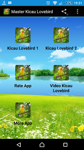 Master Kicau Lovebird