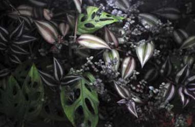 green roof plants