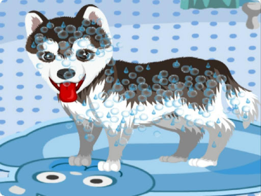My Cute Dog Bathing android2mod screenshots 1