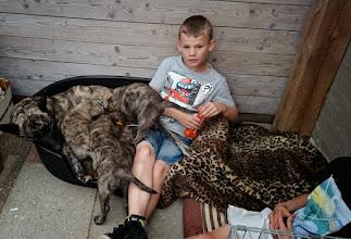 Photo: zo zit je alleen in de hondenmand te spelen met een pup en zo ligt moeders naast je te zogen...