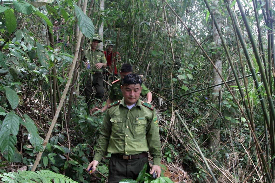 Lực lượng chức năng kiểm tra thực trạng đất lâm nghiệp