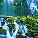 Natural Waterfall: Relaxing Sounds for Sleep ♫ ♫ icon