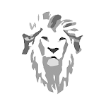 Clientes White Lion Studio Icon