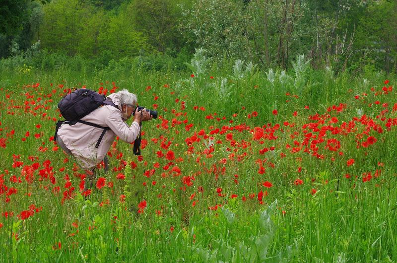 fotografare....che passione!! di Giuseppe Loviglio