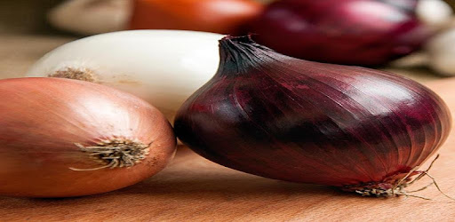 18 Great Benefits of Onions - Apps on Google Play