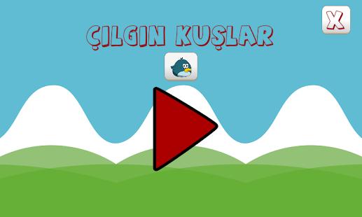 Çılgın Kuşlar - náhled
