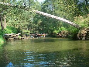 Photo: drugi etap na rzece