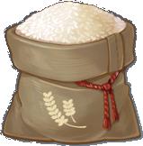 Lúa Nước - Rice