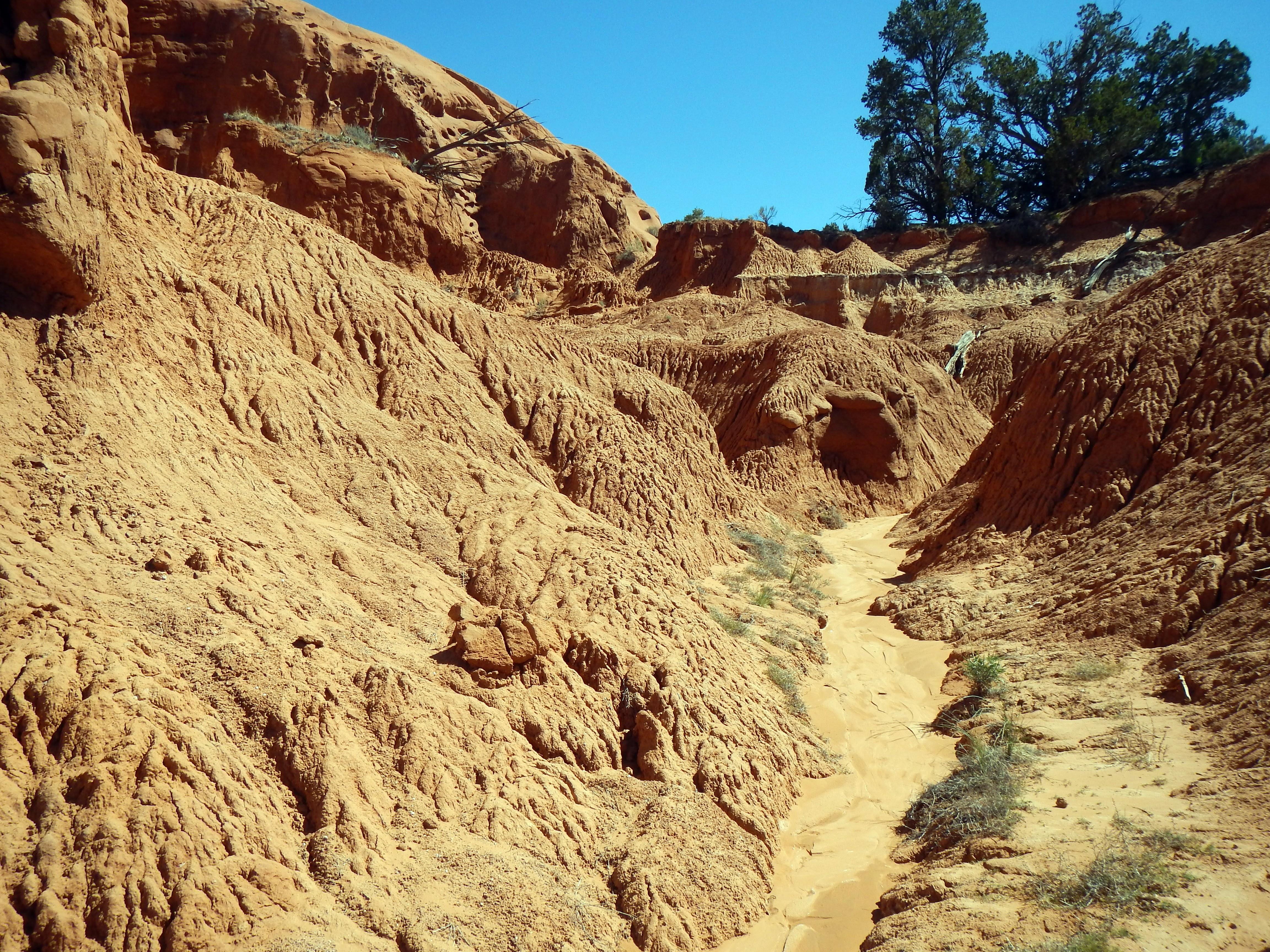 Photo: Hardened mud flow