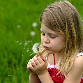 Bambina che soffia un soffione by Salvatore Amelia - Babies & Children Children Candids