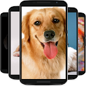 dog wallpaper icon
