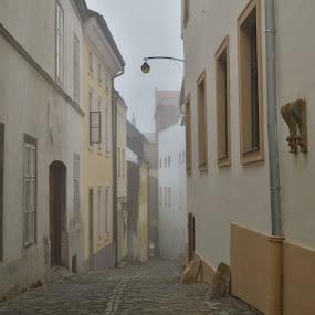 foggy street  by František Valčík - City,  Street & Park  Street Scenes