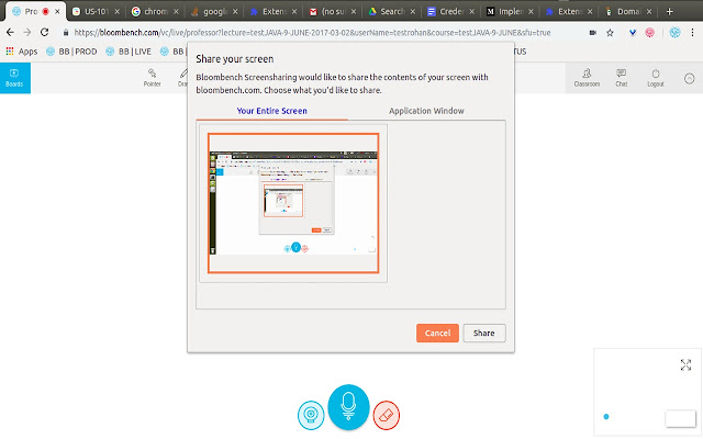 Bloombench Screenshare