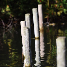 Posts in water by Stuart Lomas - Landscapes Waterscapes