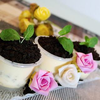 Valentine's Day Potted Plant Ice-Cream Desserts.