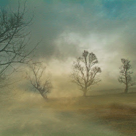 misty morning by Babis Mavrommatis - Digital Art Places ( landscapes, art, color, fog, morning )