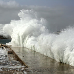 the big wave by Ivor Evans - Nature Up Close Water