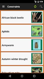 MyCrop Wheat - náhled