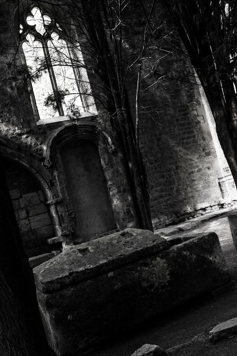 La dimora del vampiro di atlantex