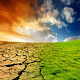 Desert Greening (app)