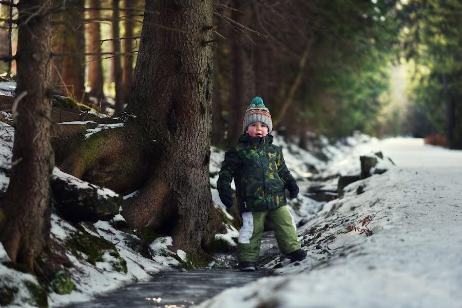 Exploration of the Winter Forest  by Piotr Owczarzak - Babies & Children Children Candids ( winter, mountain, cold, karpacz, snow, children, forest, kids, poland,  )