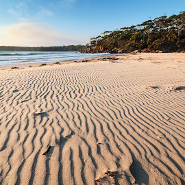 Lines In The Sand by Geoffrey Wols - Landscapes Beaches ( bendalong, coast, seascape, beach, morning,  )