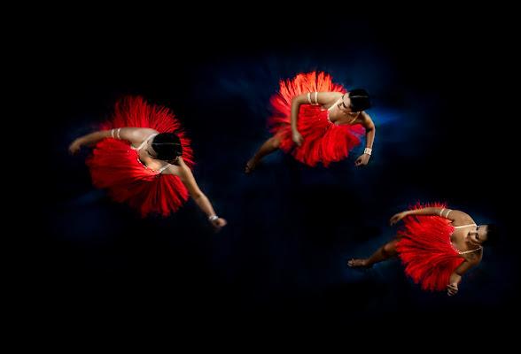 Danze caraibiche di davide_giovanni_volpi