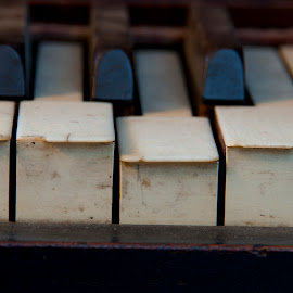 Old Keys by Chuck Vinson - Artistic Objects Musical Instruments ( piano, white, keys, ivory, black, instrument, antique,  )