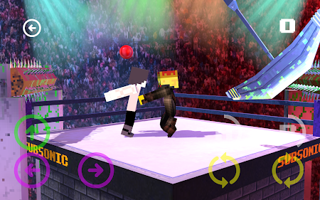 Blocky Wrestle 3D Free Edition 1.1 screenshot 38645