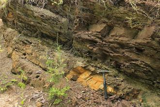Photo: A feltárás rétegsora egy ciklikus folyóvízi képződményt mutat be: a durvább szemcseösszetételű mederfáciestől a finomabb ártéri fáciesig, a teljes sorozat képviseltetve van (ugyanitt perm időszak végi flóra is gyűjthető: Voltzia- és Ulmannia-félék)
