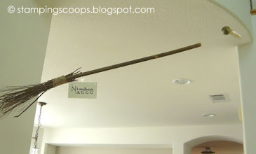 Photo: Nimbus 2000 and Snitch