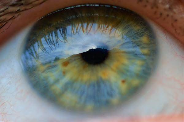 Quando gli occhi non sono solo lo specchio dell'anima.. di Riro