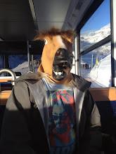 Photo: Should I hang my head out the window like a dog?