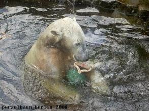 Photo: Wasserspass mit der Kugelkette :-)
