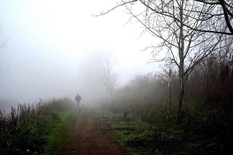 Perso tra la nebbia di Maria Luisa
