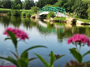 Photo: Pink flowers overlooking a pond and bridge at Cox Arboretum in Dayton, Ohio.