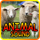 Download Animal Sound For PC Windows and Mac 1.0.2