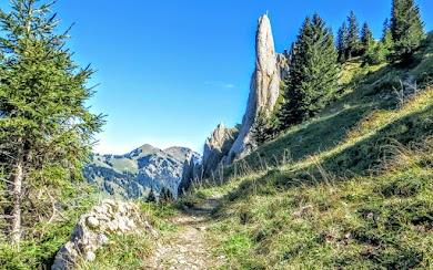 Obere Siplinger Alpe Blick Richtung Heidenkopf Nagelfluhkette Allgäu