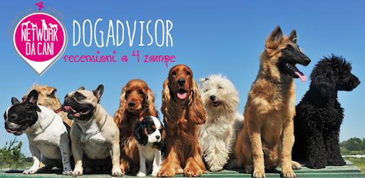 DogAdvisor