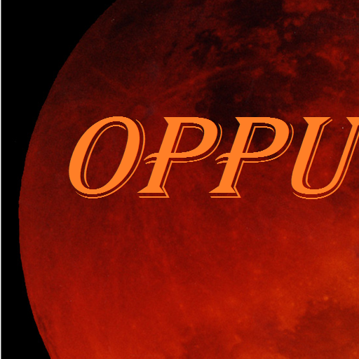 Preguntas Respuestas OppuKids