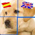 Spanish & Puzzles: Animals icon