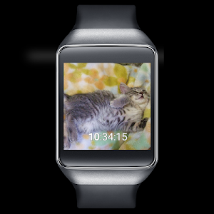 Cute Cats Watchface screenshot 2