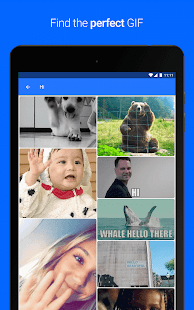 Gfycat Loops: GIF Cam+Recorder- screenshot thumbnail