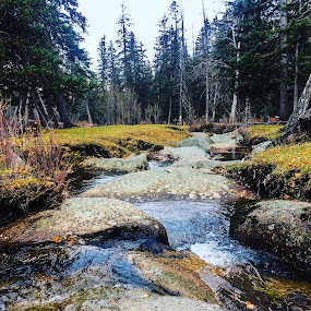 Mountain brook by Эрдэнэцэцэг Баяраа - Landscapes Waterscapes ( water, brook, mongolia, landscape, hiking )