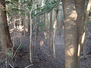 踏み跡は右の谷へ