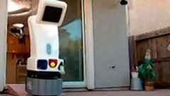 Robo Dog Sitter thumbnail