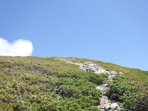 稜線はすぐそこ